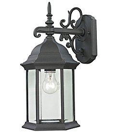 Thomas Spring Lake 1-Light Outdoor Wall Sconce