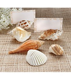 Kate Aspen Set of 12 Shells By The Sea Place Card Holder