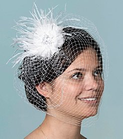 Lillian Rose® Veil with Feather