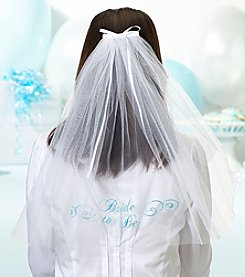 Lillian Rose® Bride To Be Veil