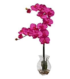 Nearly Natural® Phalaenopsis Orchid with Vase Arrangement