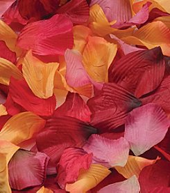 Lillian Rose® Rose Petals