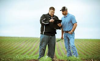 Pioneer agronomist, corn emergence, corn field, planting