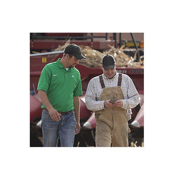 Pioneer team, corn harvest