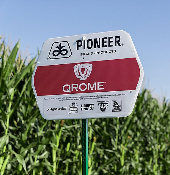 Pioneer Qrome field sign