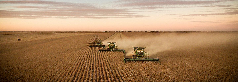 Harvesters in soybean field