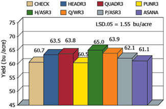 Grain yield averaged across varieties at the Maturity Group III locations.