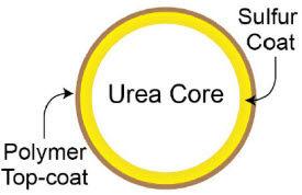 Sulfur + Polymer-Coated Urea