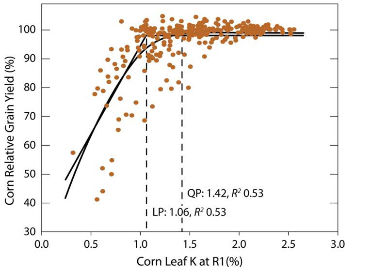 Relationship between yield response and K in corn leaves at the R1 stage.