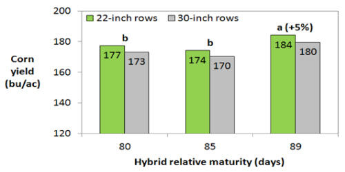Yield response to row spacing