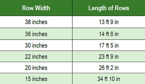 Estimating corn plants per acre
