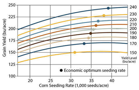 Corn grain yield response to seeding rate at 9 yield levels, 2009-2014.