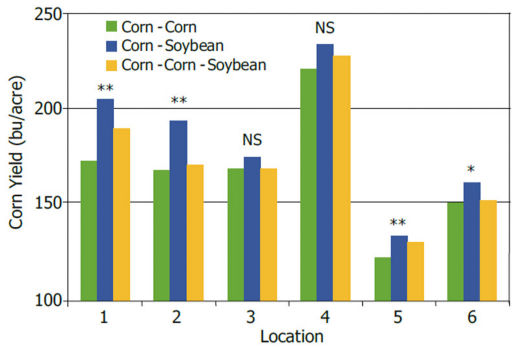 Yields obtained at 6 Illinois locations over a 2-year period using 3 corn and soybean rotations.