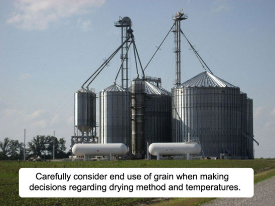 Carefully consider end use of grain when making decisions regarding drying method and temperatures.