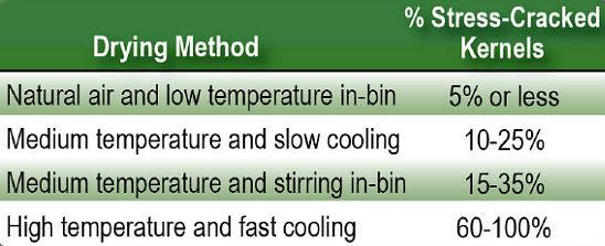 Effect of dryer method on stress crack formation.