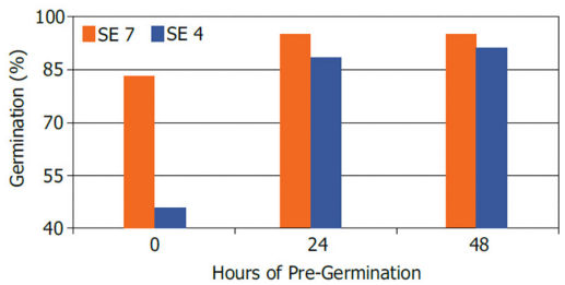 Germination of 2 hybrids with stress emergence scores of 4 (below average) and 7 (above average) following imbibitional chilling induced by melting ice.