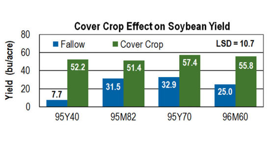 Cover Crop Effect on Soybean Yield.