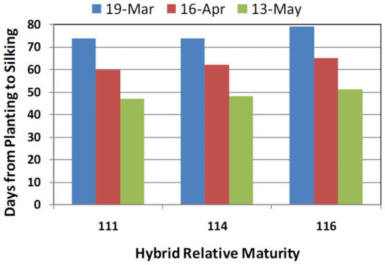 Hybrid Relative Maturity - AR