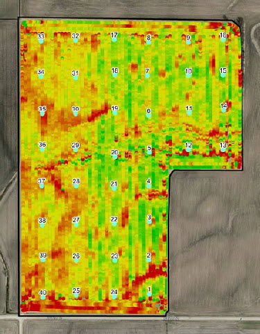 Yield and grid soil sample data for a field enrolled in the Encirca Fertility service.