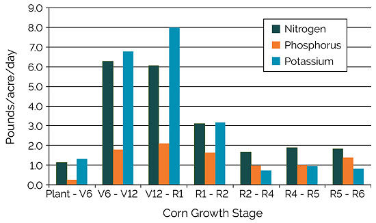 Chart showing estimated uptake of nitrogen, phosphorus, and potassium from the soil required to support a grain yield of 300 bu/acre.