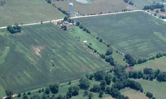 Aerial photo showing nitrogen-deficient field areas. Source: University of Missouri.