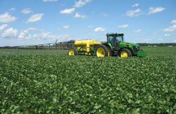 Before using a foliar fungicide, it is important to scout and determine the type of disease(s) present in soybeans, as only fungal pathogens can be controlled with these products.