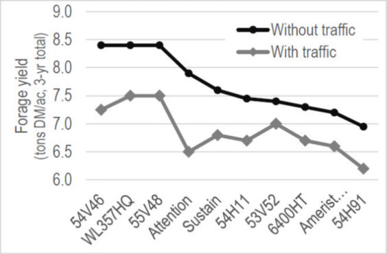 Chart showing forage yield of ten alfalfa varieties with and without wheel traffic.