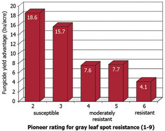 Chart: Average yield response of Pioneer® brand hybrids to foliar fungicide application according to gray leaf spot disease rating (300 trials, 1999-2008).