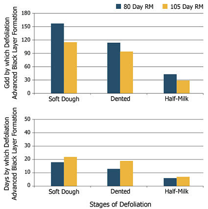 Number of Growing Degree Days and calendar days by which defoliation advanced corn black layer formation.