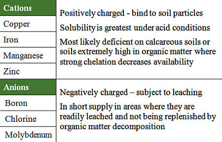 Chemical properties of micronutrients.