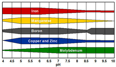Relative availability of micronutrients by soil pH.