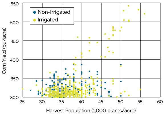 Chart showing harvest populations and corn yield of irrigated and non-irrigated NCGA National Corn Yield Contest entries exceeding 300 bu/acre, 2013-2018.