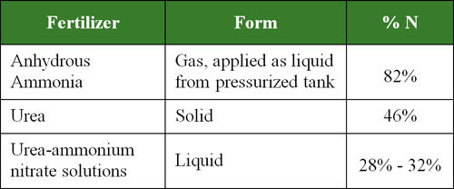 Nitrogen fertilizers most commonly used for field crop production in North America.