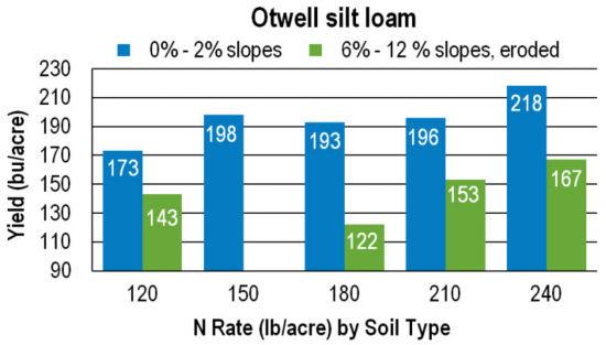 Chart: Otwell silt loan yields