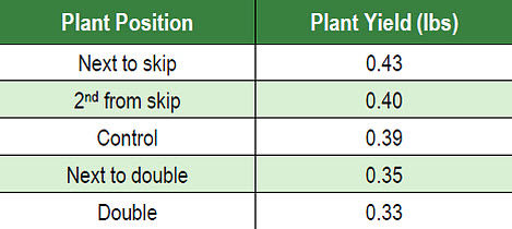 Grain yield of individual plants by position relative to skips and doubles