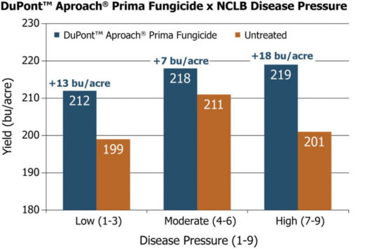 Average yields from 40 Pioneer® GrowingPoint® agronomy trials in Iowa in 2015 comparing DuPont™ Aproach® Prima fungicide applications with low, moderate, and high NCLB pressure.