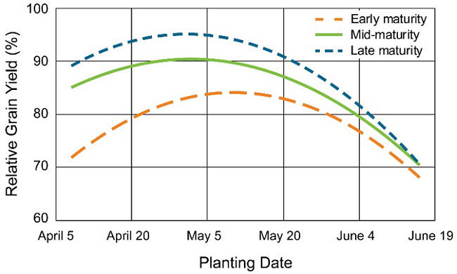Chart showing the relationship between relative corn grain yield and planting date by hybrid maturity group across 26 site-years in 2009 to 2016.