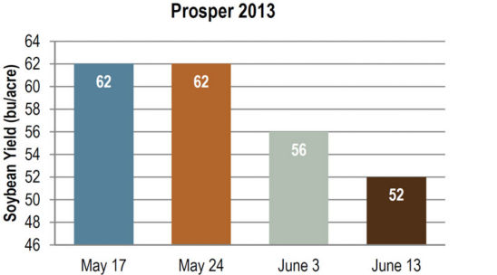 Soybean yield at Prosper in 2013, as influenced by planting date.