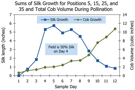Sums of silk growth and total cob volume during pollination.