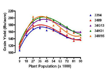 Average yield response of several Pioneer hybrids to plant population.