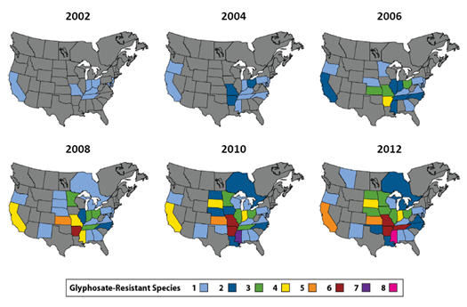 Confirmed glyphosate-resistant weed populations in North America, 2002-2012.