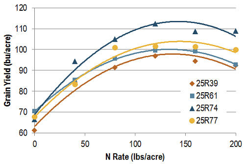 Yield by variety and N rate averaged across all six locations.