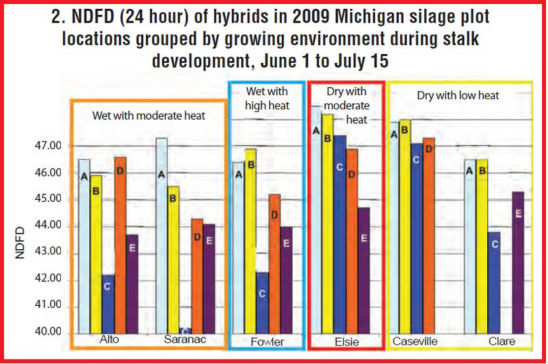 Chart: How five hybrids differed in 24-hour NDFD when grouped by the average growing conditions in Michigan during stalk development.