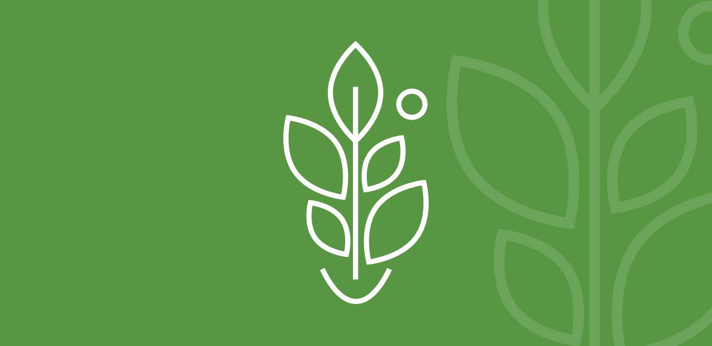 Icon for plant-based ingredients for dietary supplement solutions.