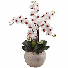 Phaleanopsis Orchid Silk Floral Arrangement