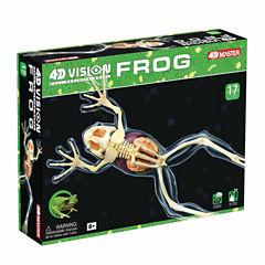4D Master 4D Vision Full Skeleton Frog Model