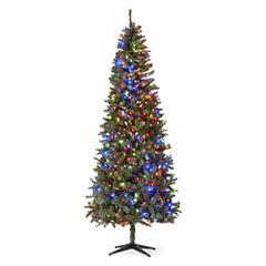 North Pole Trading Co. 9 Foot Berkley Pre-Lit Christmas Tree