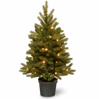 15750 - Battery Operated Christmas Trees