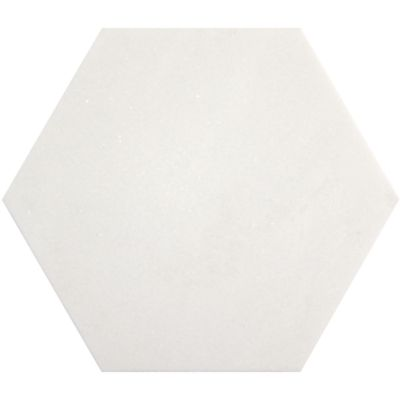 "10"" x 10"" hexagon in honed finish"