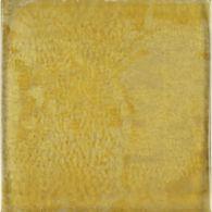 """6"""" x 6"""" field in golden maple"""